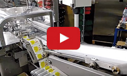 Wrapping machine EZ31 with servo drive